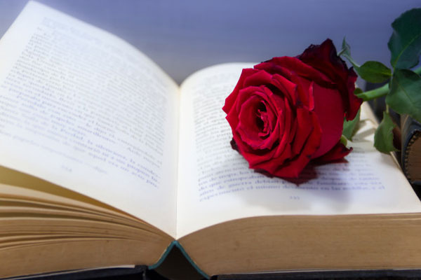 A rose on top of a book symbolizing the insuring end expense.